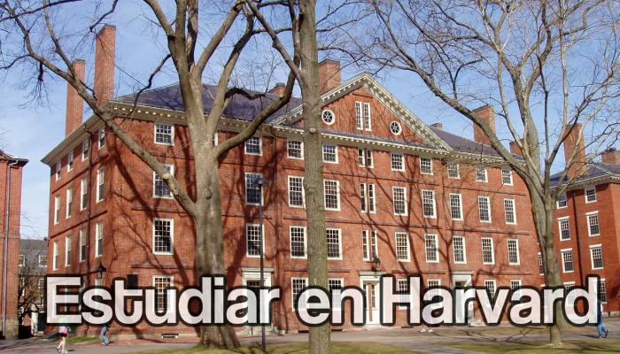 Estudiar en Hardvard y adquirir una beca