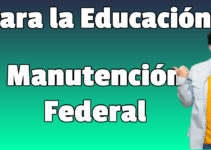 Becas de manutención federal para la educación superior 2020