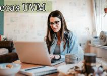 ¡Las becas que ofrece la UVM!