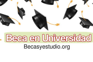 ¿Qué beca solicitar en una Universidad Privada?