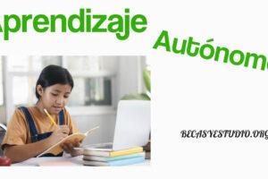 Desarrollar el aprendizaje autónomo