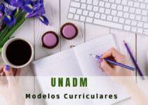 Cuántos modelos curriculares tiene la UNADM