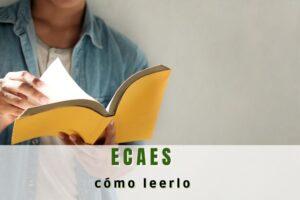 ¿Cómo leer el ECAES?