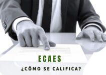 ¿Cómo se califica el ECAES?